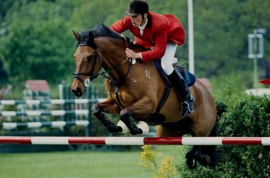 Salto ostacoli con cavallo